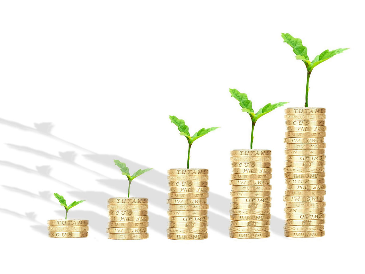 equity release - coins stacked with saplings growing on top